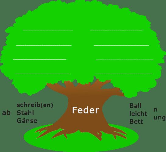"""Baum mit dickem Stamm. Auf dem Baumstamm steht der Wortstamm """"Feder"""". Links und rechts des Baumstamms sind stehen Wortbausteine und Wortstämme."""