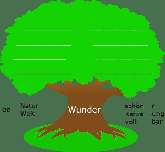 """Baum mit dickem Stamm. Auf dem Baumstamm steht der Wortstamm """"Wunder"""". Links und rechts des Baumstamms sind stehen Wortbausteine und Wortstämme."""