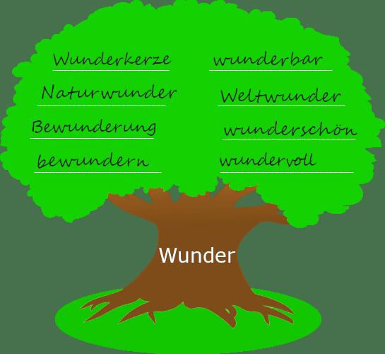 """Baum mit dickem Stamm. Auf dem Baumstamm steht der Wortstamm """"Wunder"""". Auf der Krone des Baums stehen Wörter, die mit dem Wortstamm gebildet wurden."""