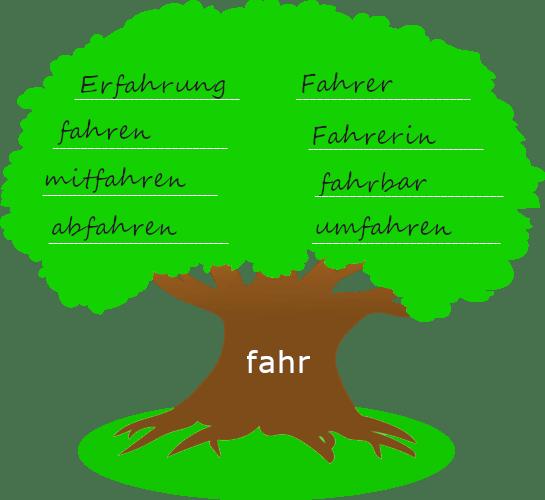 """Baum mit dickem Stamm. Auf dem Baumstamm steht der Wortstamm """"fahr"""". Auf der Krone des Baums stehen Wörter, die mit dem Wortstamm gebildet wurden."""